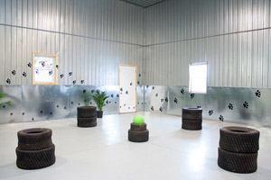 daycare indoor playroom